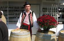 Вино, винодел