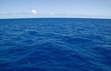 В Тихом океане обнаружили трубу с кровью