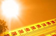 canicula жара термометр
