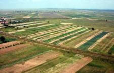 teren agricol земли агро сельское хозяйство поле