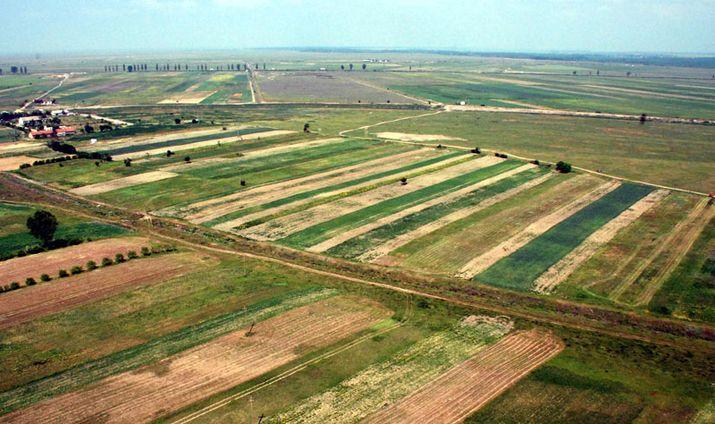 Фермеры Молдовы приступили к весенним полевым работам