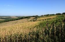 молдова поля склон