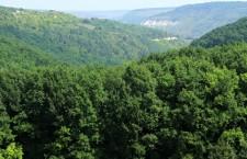 Молдова Дондюшанский район
