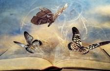 Бабочки над книгой