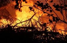 пожар на республиканском стадионе